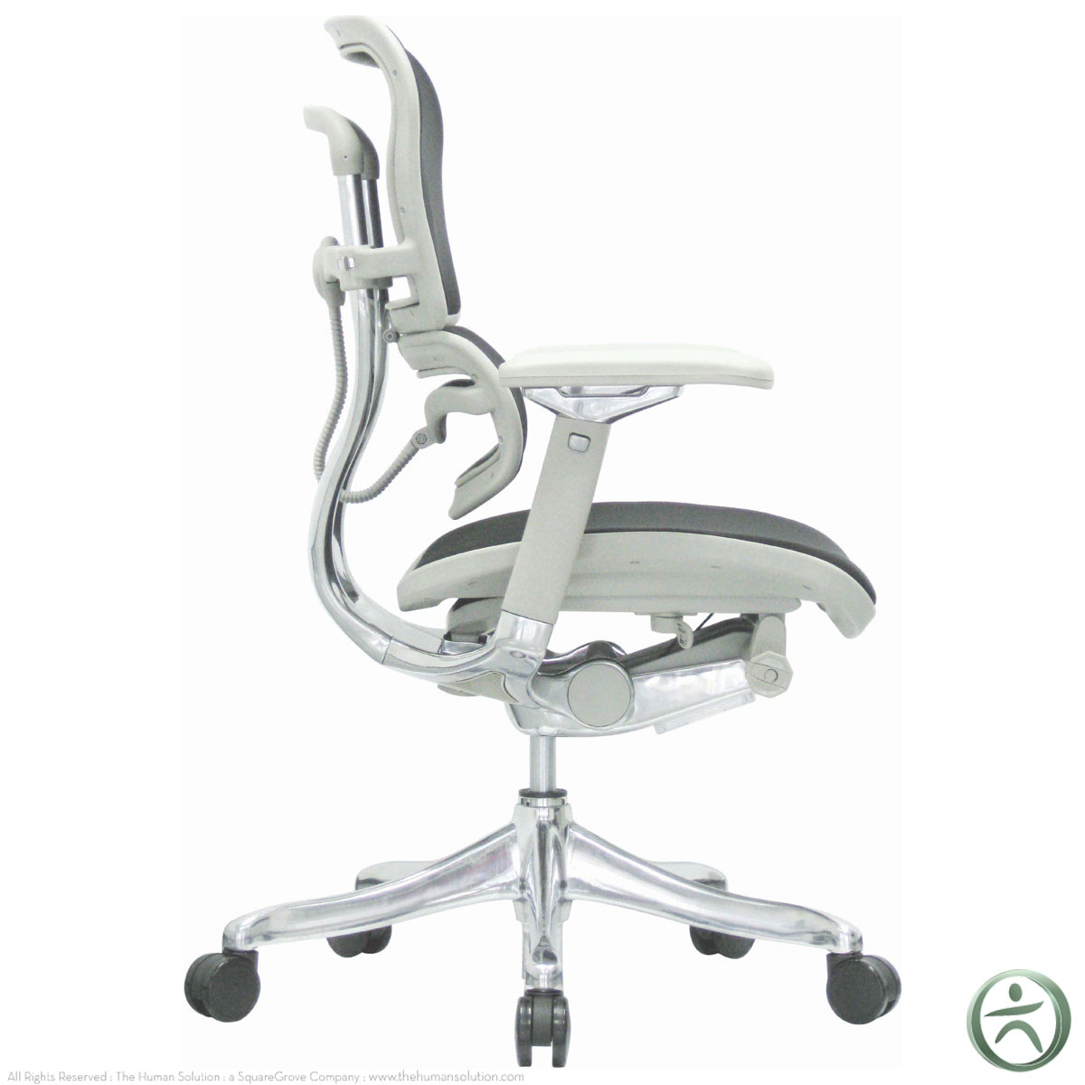 Raynor Chairs Raynor Ergohuman V2 Chair V210fblk Shop Ergohuman Chairs