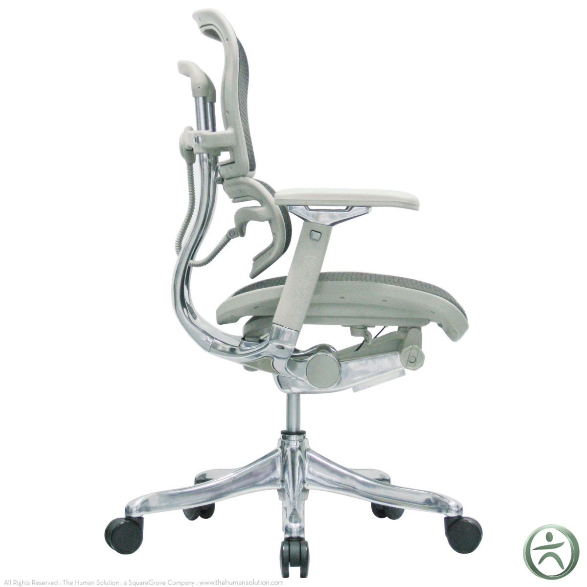 Raynor Chairs Raynor Ergohuman V2 Chair V210meblk Shop Ergohuman Chairs