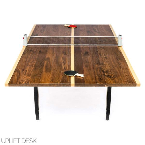Conference Room Ping Pong Table