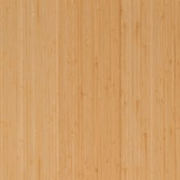 Photos Of Engineered Ebony Bamboo Floors - Movies Ebony Teen