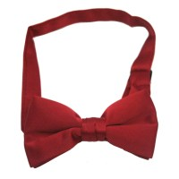 Doctor Who Burgundy Bow Tie | PartySuppliesDelivered