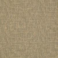 Patcraft Flex Action Carpet Tile I0279