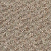 Tandus Infinity Dakota Plains Carpet Tile 05849