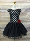 Online Cute Polka Dot Dress With Lace And Tulle Skirt