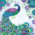 Floral peacock canvas wall art by oopsy daisy rosenberryrooms com