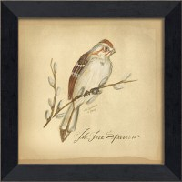 Tree Sparrow Bird Framed Wall Art by Spicher and Company