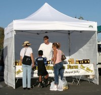 Caravan 10 x 10 Displayshade Canopy Value Package + 4 ...