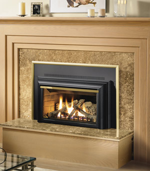 Napoleon GDIZC Direct Vent Gas Fireplace Insert  GDIZCNSB