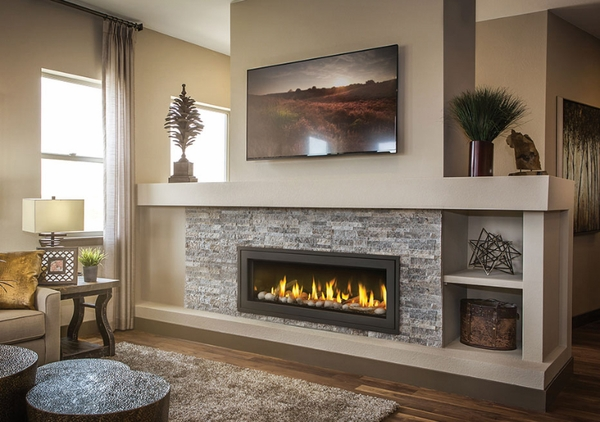 Napoleon Vector LV50N2 SeeThru Direct Vent Linear Gas Fireplace