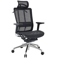 Future Modernistic Fully-featured Ergonomic Office Chair W ...