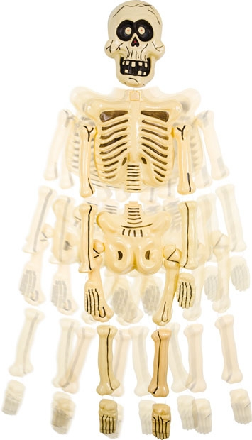 wholesale kitchen appliances and dining room tables big head jangles skeleton prop | halloween skeletons ...