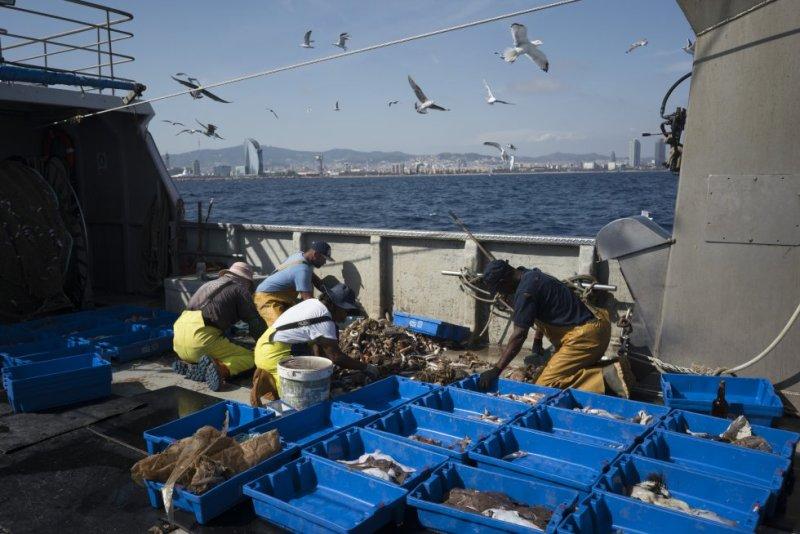 No todos los residuos a la mar se identifican a simple vista. Un estudio de la Universitat de Barcelona detectaron en el litoral mediterráneo español una media de 100.000 microplásticos (inferiores a 5 milímetros de diámetro) por kilómetro cuadrado.