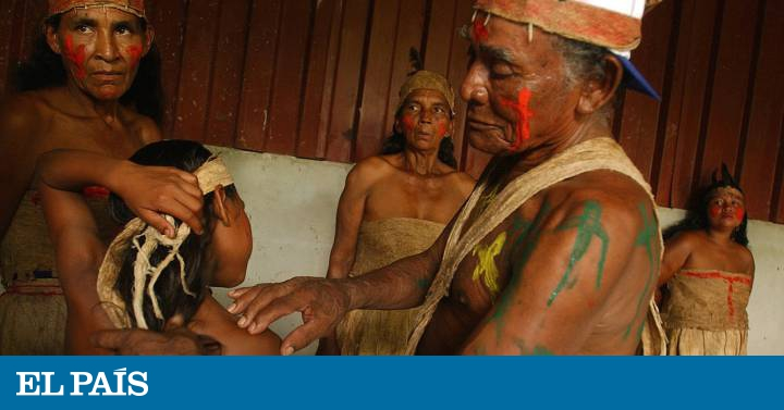 The invasion of lands corners the natives of Nicaragua   International