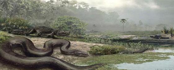Resultado de imagen para la vida hace 60 millones de años