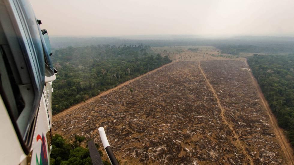 Helicóptero do IBAMA sobrevoa área desmatada ilegalmente.