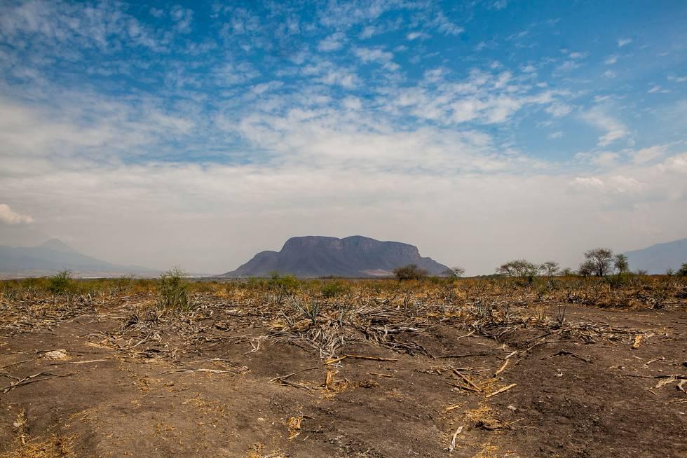 Cerro del Petacal, en medio del LLano Grande