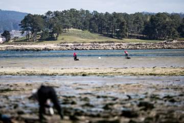 Mariscadoras en el arenal próximo al campo de golf de A Toxa