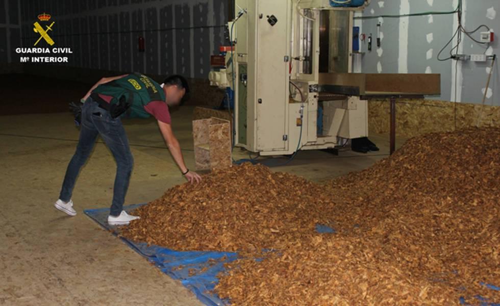 Un agente examina la picadura de tabaco para elaborar cigarrillos falsificados.