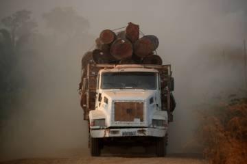 Un camión cargado con troncos cortados en un área de la selva amazónica el pasado mes agosto.