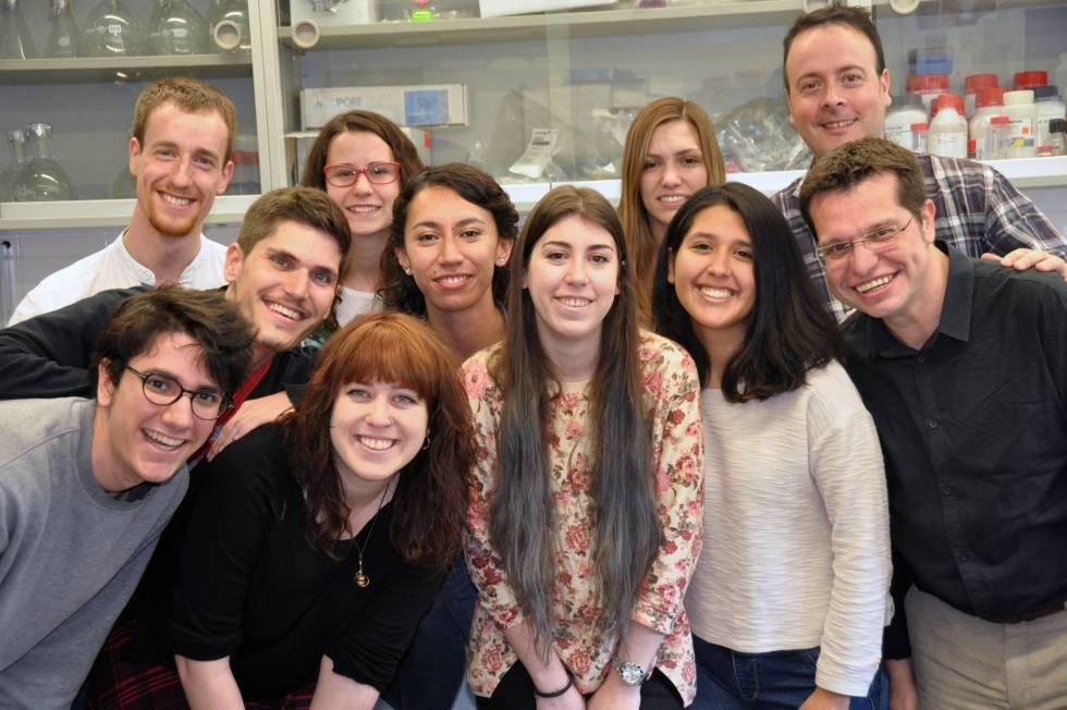 Pesquisadores do laboratório de Cristian Cañestro e Ricard Albalat.