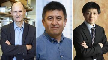 De izquierda a derecha, Izpisúa, Mitalipov y Kim.