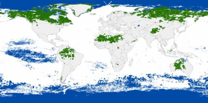 El futuro del 70% de los espacios vírgenes del planeta depende de cinco países