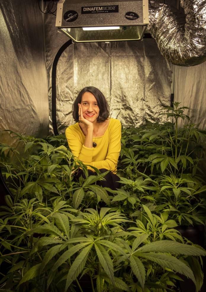 Carola Pérez, presidenta del Observatorio Español de Cannabis Medicinal, en su cultivo casero..