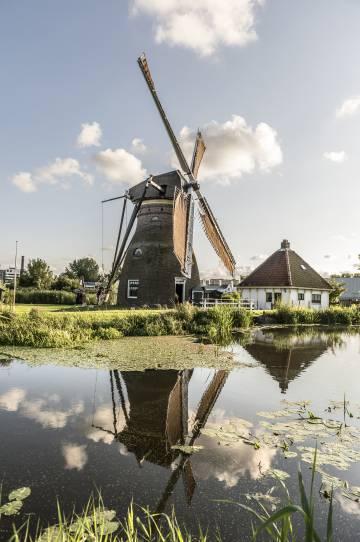 El molino de Stadsmolen, en Leiden.