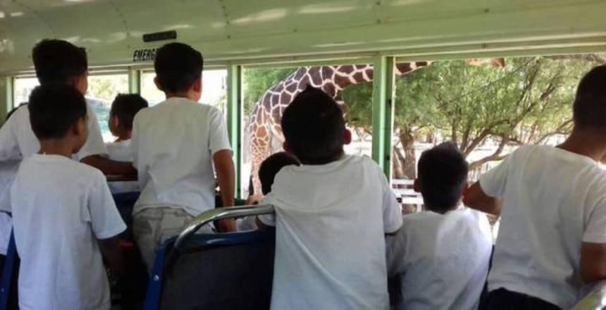 Niños del albergue Unacari, en Sonora, visitan un zoológico Gobierno de Sonora.