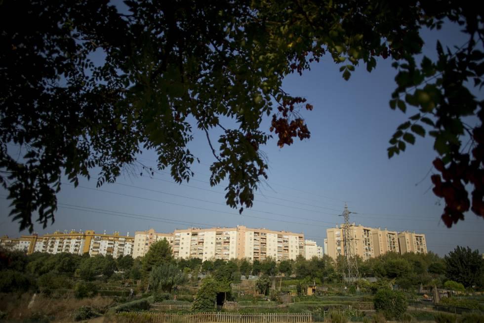 Vista general del las viviendas de Miraflores y sus huertos urbanos en Sevilla.
