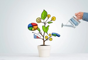Look after investments plant