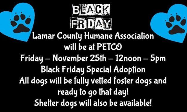 Lamar County Humane Association host Black Friday Adoption event