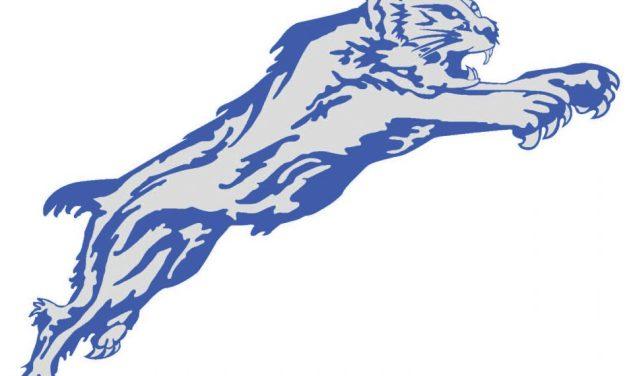 Arkansas Hands Wildcats First Loss