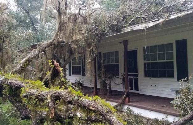 HurricaneIrmaBrooksville2