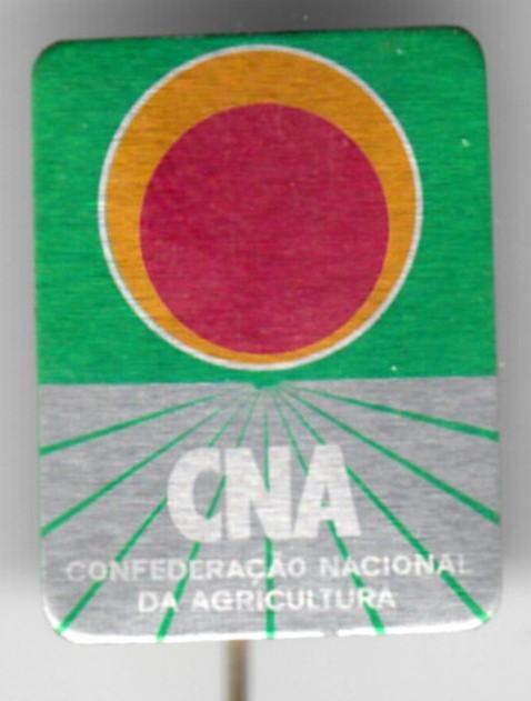 CNA_pin_d2