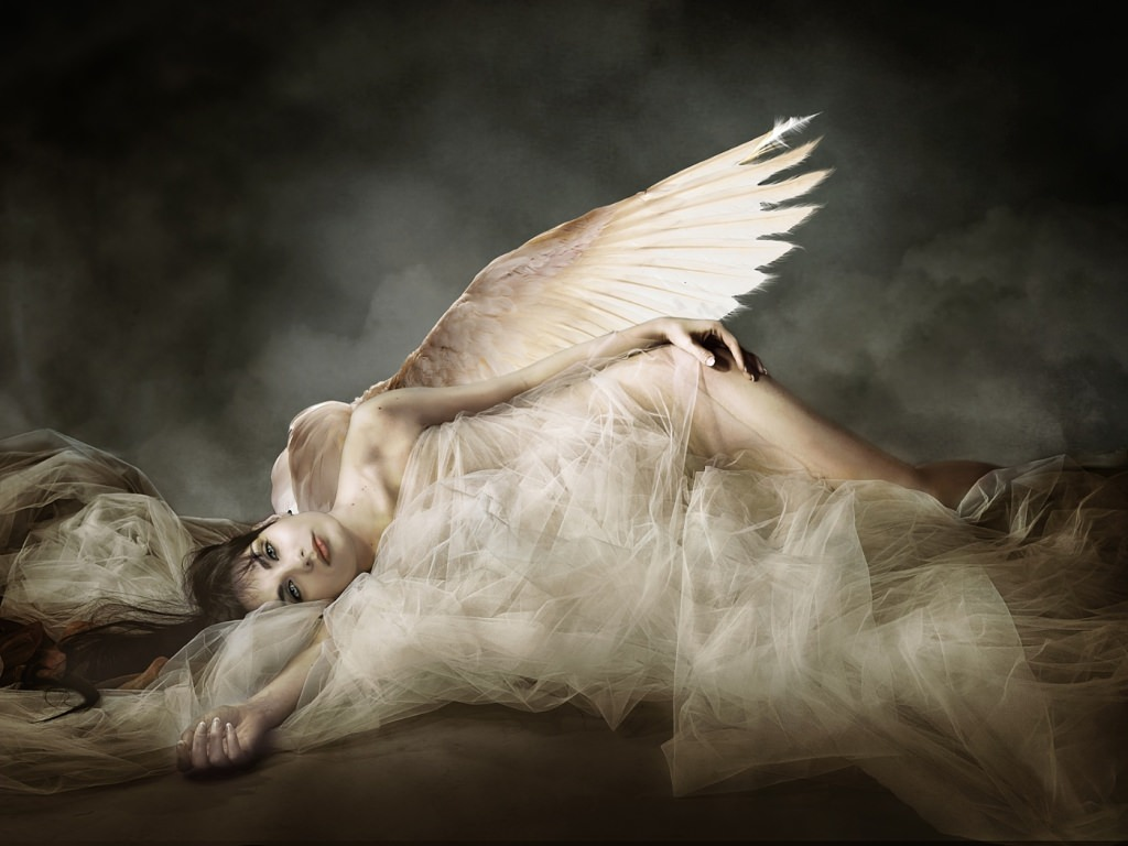 Fallen Angel Image Awarded Potw