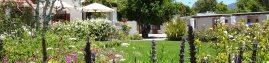 Glen Avon - Garden