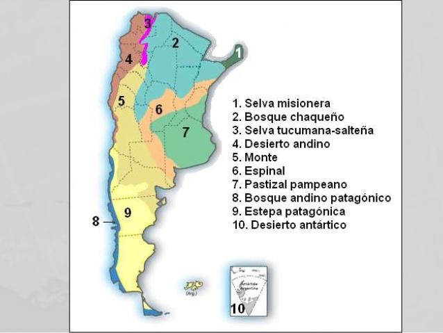 Mapa de los Biomas de Argentina.