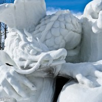 10 Amazing Snow Dragons