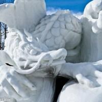 10 Amazing Snow Dragons