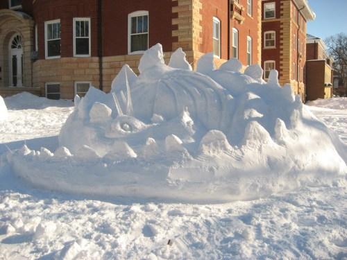 snowdragon9