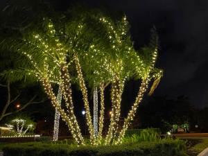 holiday-lights-5