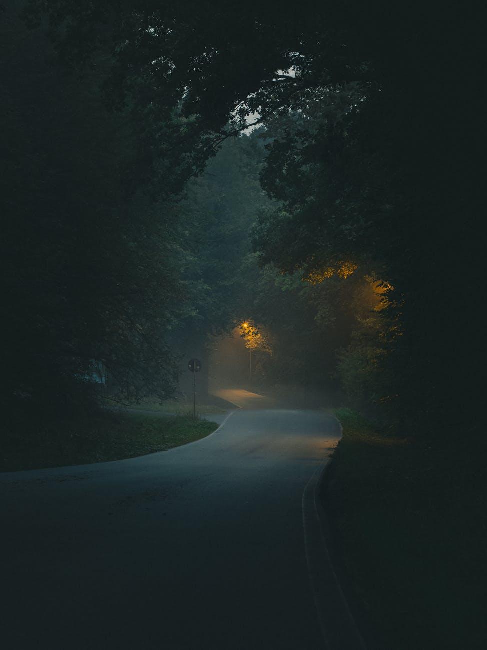 gray asphalt road between trees