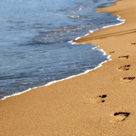 LEAVE NOTHING BEHIND BUT YOUR FOOTPRINTS…
