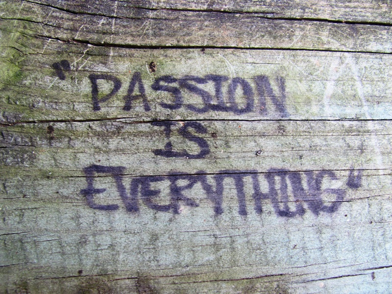 What are you most passionate about?