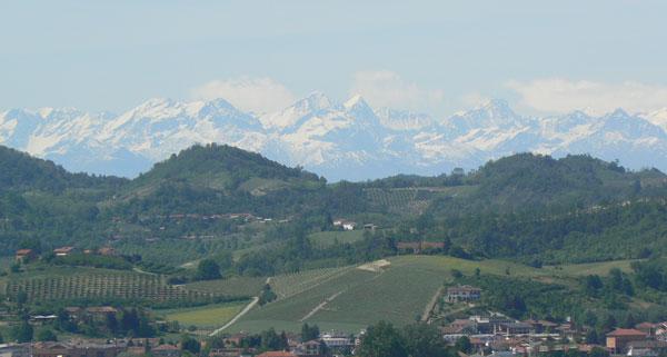 Roero hills