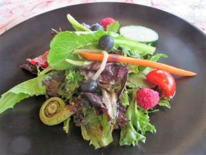Farmer's Salad featuring fiddlehead ferns.