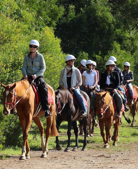 horsebackwinery