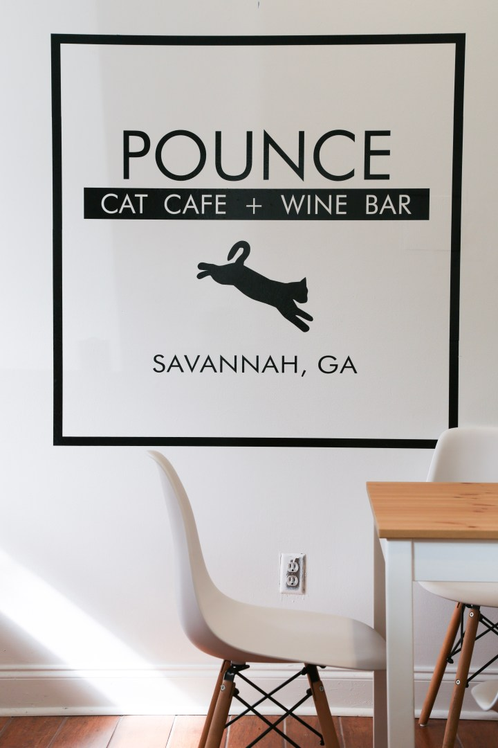 Savannah gets its own Cat Café: Pounce