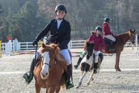 concours-equitation-saut-obstacles-equ-crin-olima-chantraine (7)